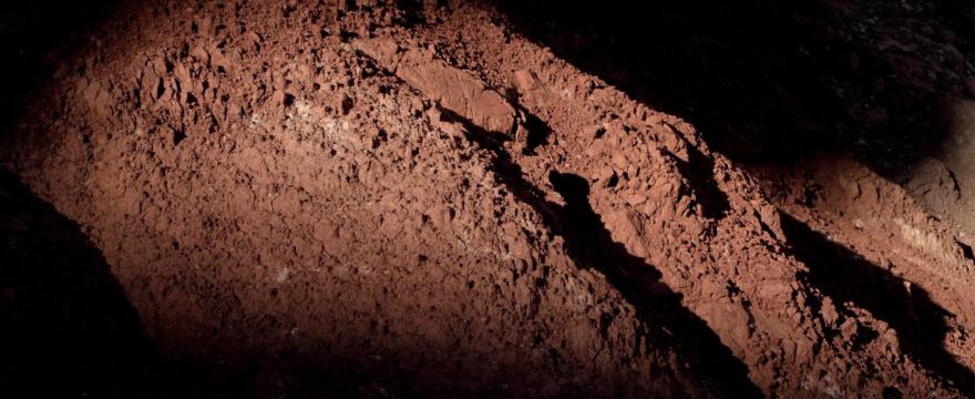 """Matera 2019, prorogata fino all'8 marzo la grande mostra """"Blind Sensorium. Il paradosso dell'Antropocene""""."""